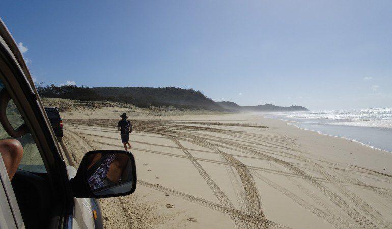 Fraser Island or K'gari tour